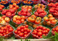Tomatoes at the market Stock Photos