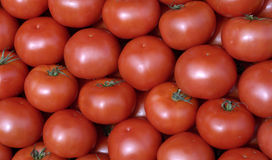 Tomatoes at the market Royalty Free Stock Photo