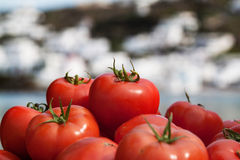 Tomatoes at market on the beach. Ripe tomatoes for sale at the market at the harbour of Mykonos, Greece Royalty Free Stock Photo
