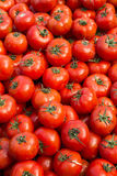 Tomatoes at the Market Royalty Free Stock Photography