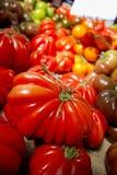Tomatoes at market Royalty Free Stock Photos