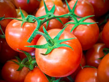 Tomatoes in the Market Stock Photography