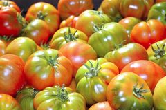 Tomatoes in market raff tomato vegetable Royalty Free Stock Images