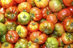 Tomatoes in market raff tomato vegetable Stock Photography