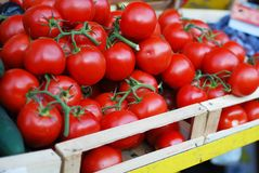 Tomatoes at a market stand. Red, fresh tomatoes at a market stand Royalty Free Stock Photo