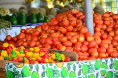 Tomatoes at a market royalty free stock photos