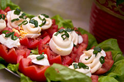 Tomatoes and mayonnaise Stock Photography
