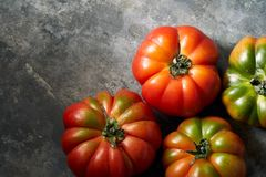 Tomatoes on a metal background royalty free stock photos