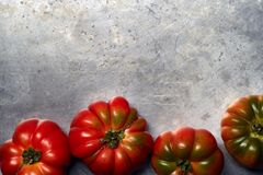 Tomatoes on a metal background stock photo
