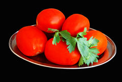 Tomatoes on a metal plate royalty free stock image