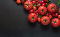 Tomatoes and mint on table Royalty Free Stock Photo