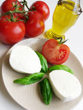 Tomatoes And Mozzarella. Genuine Italian tomatoes, mozzarella di bufala, olive oil and basil. Ingredients for mediterranean diet and caprese Royalty Free Stock Image