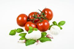 Tomatoes, mozzarella, basil and garlic Stock Photo