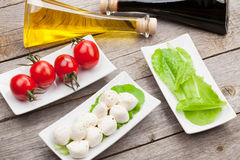 Tomatoes, mozzarella and green salad leaves with condiments Royalty Free Stock Image