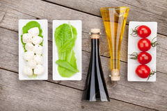 Tomatoes, mozzarella and green salad leaves with condiments Stock Photography