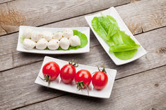 Tomatoes, mozzarella and green salad leaves Royalty Free Stock Photos