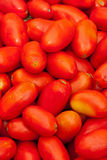 Tomatoes at the mrket Stock Image