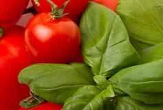 Tomatoes n basil Royalty Free Stock Images