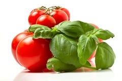 Tomatoes n basil Stock Image