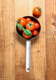 Tomatoes in an old saucepan Stock Photography