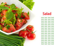 Tomatoes, an onion, pepper and salad on white ba Royalty Free Stock Photo