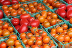 Tomatoes, orange and red. Few tomatoes, red and orange Stock Images