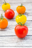 Tomatoes, orange, yellow and red Royalty Free Stock Photo