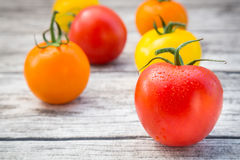 Tomatoes, orange, yellow and red Stock Photo