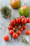Tomatoes and oregano Royalty Free Stock Images