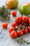 Tomatoes and oregano Stock Image