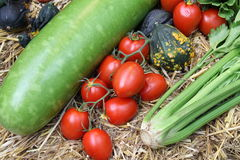 Tomatoes with other vegetables on Hay Stock Images