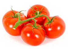 Tomatoes over white. Stock Photo