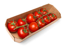 Tomatoes in paper tray Royalty Free Stock Images