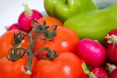 Tomatoes, paprika and radishes Stock Images