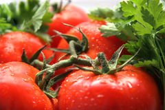 Tomatoes and parsley. Five tomatoes and parsley on a light background Stock Images