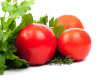 Tomatoes, parsley and dill Royalty Free Stock Image
