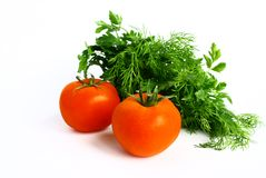 Tomatoes, parsley and dill. Royalty Free Stock Images