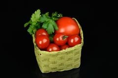 Tomatoes and parsley Stock Image