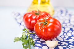 Tomatoes. With parsley, garlic, oil, in a studio Royalty Free Stock Photos