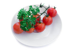 Tomatoes and parsley twig Stock Photography