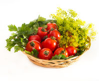 Tomatoes with parsley in wicker plate Royalty Free Stock Photography