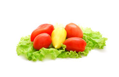 Tomatoes and pepper. Fresh pepper, tomatoes and lettuce isolated on a white background Stock Images