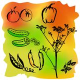 Tomatoes, pepper and paprika silhouettes Stock Images