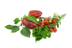 Tomatoes, pepper, parsley Stock Photos