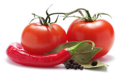 Tomatoes, pepper, spice Royalty Free Stock Photo