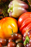 Tomatoes And Peppers Royalty Free Stock Photos