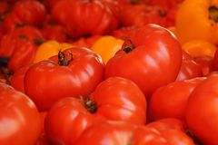 Tomatoes and peppers Stock Images