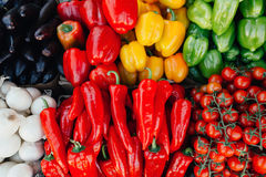 Tomatoes, peppers, onions and zucchini on the counter of the farmer Royalty Free Stock Image