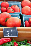 Tomatoes and Peppers for Sale Royalty Free Stock Photo