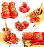 Tomatoes, peppers, spaghetti and spices Stock Photography